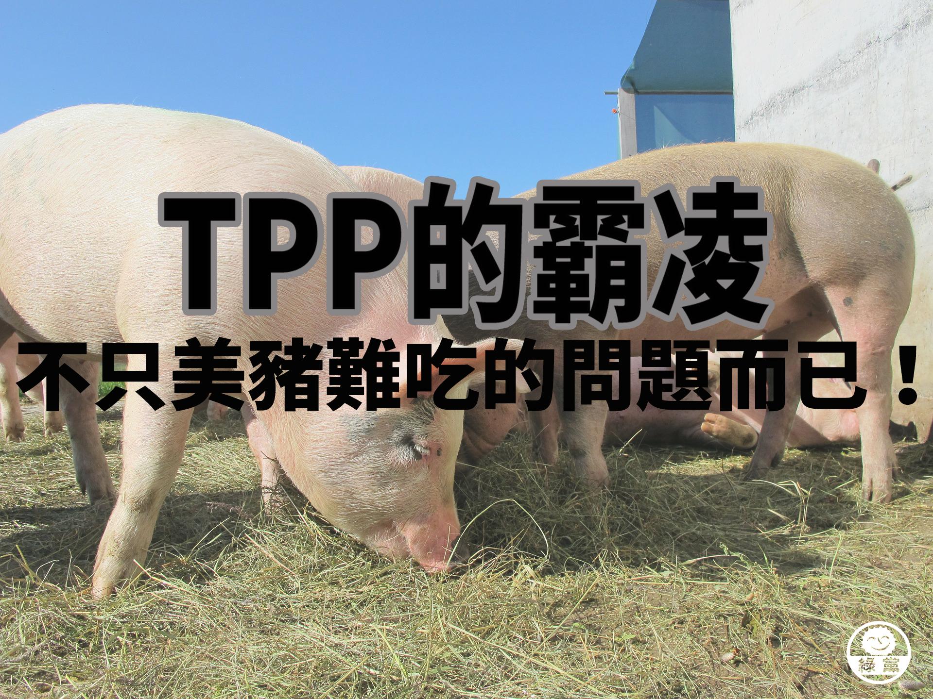 pigs-214350_1920.jpg